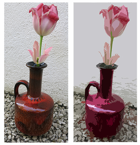 rosa-tulipan3